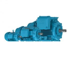 Electric Motor Types