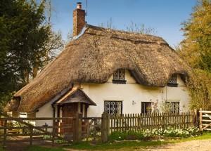 Thatch Cottages